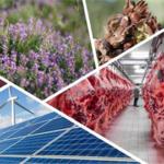 Tarıma Dayalı Yatırımların Desteklenmesi Projesinde Süre Uzatımı yapıldı